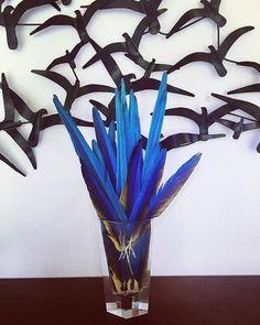 #amazonsecretsspa #natural #spa #puntadeleste #buenosaires #serenahotel #hotelbarradas #amordeumavida https://www.instagram.com/amazonsecrets/ http://amazonsecretsspa.com/ www.amazonsecretsspa.com