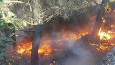 Accende un fuoco per bruciare sterpaglie ma rimane asfissiato dal fumo: muore un anziano nel Cosentino   Il Quotidiano del Sud