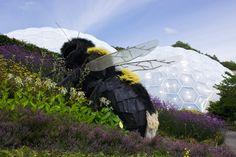Giant_Bee_Eden_Project.jpg (4592×3056)