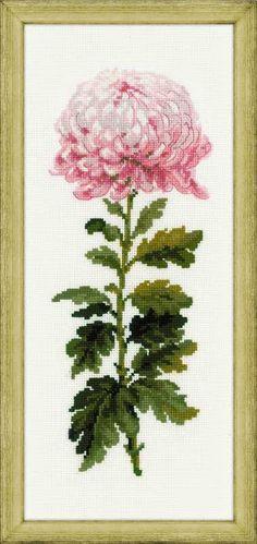 """Вышивалка: Скачать схему вышивки Riolis 1425 """"Нежный цветок"""""""