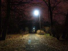 Empty Street at Night | Empty street at night