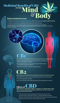Holistic benefits of CBD on your body and mind!