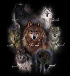 the wolves from twilight | Share