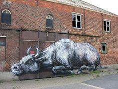 Doel Belgium #graffiti #streetart #belgium
