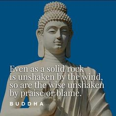 """""""Even as a solid rock is unshaken by the wind, so are the wise unshaken by praise or blame."""" ― Buddha"""