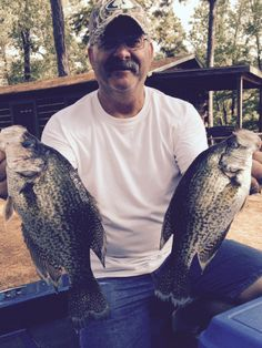 15 Best Toledo Bend Fishing images in 2017 | Toledo bend