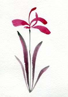 Calligraphy Orchid, watercolor by Kim Attwooll