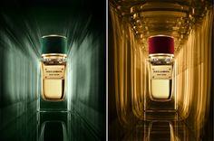 Dolce & Gabbana - Velvet Collection - Velvet Vétivier - Velvet Desire