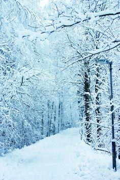 Tuusula, winter, Finland