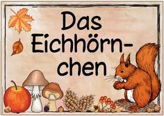 Ideenreise: Zwei neue Themenplakate (The Apple / The Squirrel) … - Vorschule Spiele Kindergarten Portfolio, German Language, Woodland Party, New Theme, Science And Nature, Animals For Kids, Squirrel, Apple, Teaching