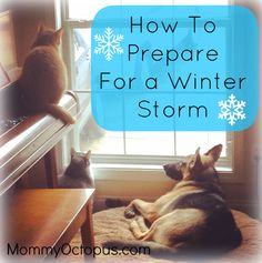 How to Prepare For a Winter Storm | Mommy Octopus