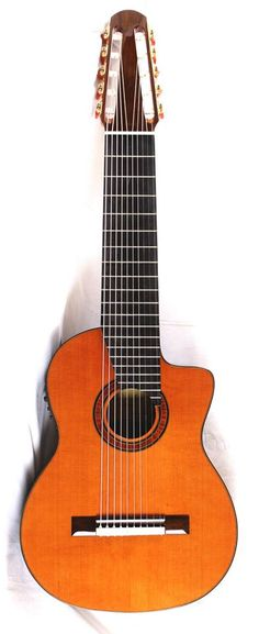 """Bartolex 10 string guitar, with cutaway and electronics. As they say: """"We specialize in especial models and multi-string classical guitars. """". http://www.bartolex.com/"""