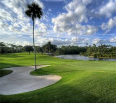 Palm Harbor Golf Club in Palm Coast, Florida ~ An 18-hole, par 72 course with superior conditions & unique personality. Conveniently located between Daytona Beach & the Historic St. Augustine area, this course offers sloped fairways, strategic bunkering, natural water features & generous greens that will test your ability & ensure you use all the clubs in your bag. The course underwent a complete renovation in 2009 and was re-opened to rave reviews. A beautifully balanced course!