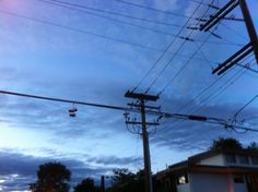 Shoes on Telephone Lines and Power Lines