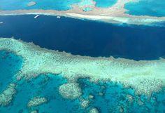 #Australie Au large de l'Etat du Queensland, situé dans le nord-est du pays, cette merveille de la nature est un incontournable lors d'un voyage en Australie. Elle représente un organisme vivant de plus de 2500 km de long et est considérée comme la plus grande structure vivante sur Terre. Sa vaste biodiversité, ses eaux claires et chaudes en font un lieu prisé de tous. http://vp.etr.im/a0d4