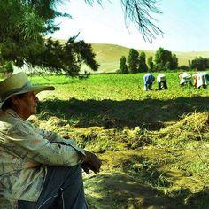 VIDEO. Así anunció Julio Morriberón que el proyecto Tía María NO VA MÁS en Arequipa http://hbanoticias.com/16756