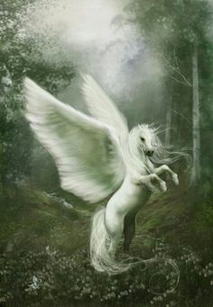 Pegasus of the enchanted forest. Symbolizes inspiration and dreams.