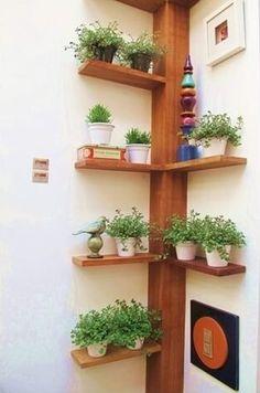 Jardín vertical.