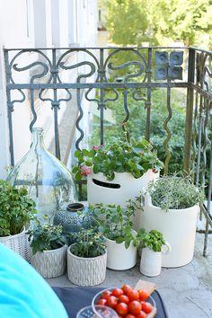 Vintage Automatische Bew sserung um die Pflanzen ber den Urlaub am Leben zu erhalten shades of green plants un flowers Pinterest Garten