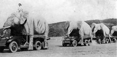 1940s: British forces in India camouflage their vehicles as elephants [700x347]