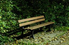Jessie zat op een bankje in het park en toen kwam er een man naast haar zitten. Die zei dat ze naar het metro-station moest gaan omdat daar iemand was die op haar wachtte.