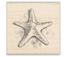 Cute starfish sketch...tattoo??