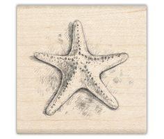 Cute starfish sketch...tattoo??