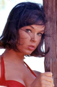 Yvonne Joyce Craig was born May 1937 and is an American ballet dancer and actress best known for her role as Batgirl on the TV series Batman Batgirl, Supergirl, James Gordon, Robin, Yvonne Craig, Beautiful Women Pictures, Classic Beauty, Iconic Beauty, Classic Tv