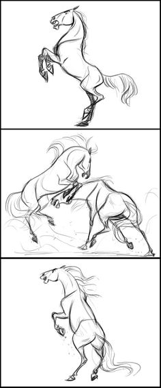HORSE SKETCHES! LOVE LOVE LOVE LOVE!