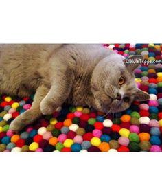 Kelpaa kieriä!  #kissa #sisustus #sisustusideat #HuopaPalloMatto  http://ullkuleteppe.com/round-rugs/pinocchio-rug-round-multi-colour.html