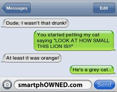 Other - Dude, I wasn't that drunk!You started petting my cat saying 'LOOK AT HOW SMALL THIS LION IS!!'At least it was orange!He's a grey cat...