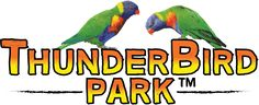 Go on adventure at Thunderbird Park Mt Tamborine! Perfect for camping and school holidays on the Gold Coast. Enjoy Fossicking, high ropes, horse riding & more.