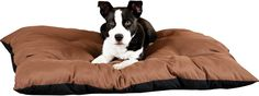 The K&H Pet Products Thermo-Cushion Pet Bed combines the upscale look of an attractive poly-fiber filled washable bed with the benefit of body temperature heat. Dual thermostats maintain a surface temperature approximately 12 to 15 degrees above ambient air temperature to your pet's normal body temperature when in use. The heater is removable for washing. Recommended for indoor use.