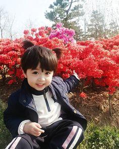 Cute Asian Babies, Korean Babies, Asian Kids, Cute Funny Babies, Cute Little Boys, Cute Baby Boy, Little Babies, Cute Kids, Cute Baby Videos
