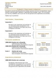 Plantillas de Currículum Vitae Combinado - Modelo 2