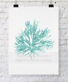Sea Coral in Woodlawn II Print by driftwoodinteriors on Etsy, $25.00