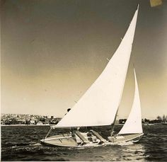 """""""If you surrender to the wind you can ride it."""" Toni Morrison #sailing #verysperry"""
