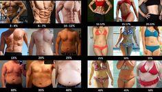 체지방에 따른 몸매구별하기:-) ▶ 남자는 기본 10~15% ▷ 여자는 기본 20~25% ★ 남자 체지방률 계산공식 (1.1 X 몸무게) - [128 X (몸무게/키)] ☆ 여자 체지방률 계산공식 (1.07 X 몸무게) - [128 X (몸무게/키)]