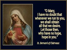 Immaculate Heart of Mary, pray for us. Amen.