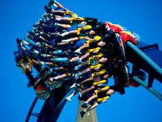 The NEW Roller Coaster Experience takes you behind-the-scenes and heart-poundingly close to Busch Gardens Tampa Bay's awesome collection of world-class thrill rides, like Montu. Florida Theme Parks, Tampa Florida, Florida Vacation, New Roller Coaster, Roller Coasters, Orlando, Busch Gardens Tampa Bay, Sea World, Wonderful Places