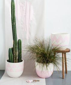 Light Pink Dipped Pot - Pop & Scott - Pop & Scott - Brands