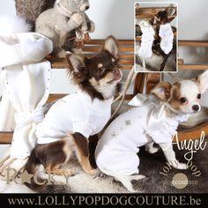 Chihuahua Angel en Rocky samen in witte hondenkledij. Deze hondenspulletjes zijn online te bestellen op www.lollypopdogcouture.be