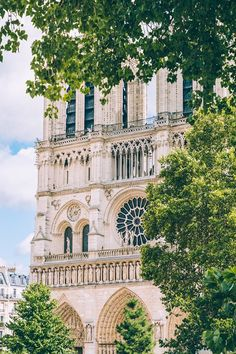 Notre-Dame de Paris. The exterior of Notre-Dame is fascinating.