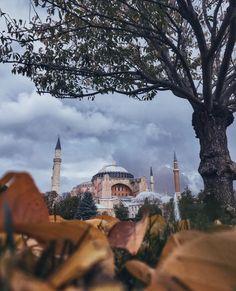 Paris Skyline, Istanbul, Taj Mahal, Building, Travel, Viajes, Buildings, Destinations, Traveling
