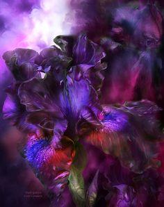 Мобильный LiveInternet Цифровая живопись Кэрол Каваларис. Цветы. | tender_Helen - Дневник tender_Helen |