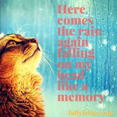 Yes, been raining all day......#quotes
