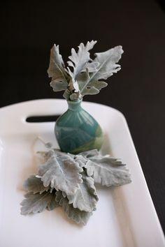 a grey option for bouquets : dusty miller Dusty Miller, Queen Annes Lace, City Guides, Bridal Bouquets, Rowan, Deep Purple, Charleston, Favorite Color, Florals