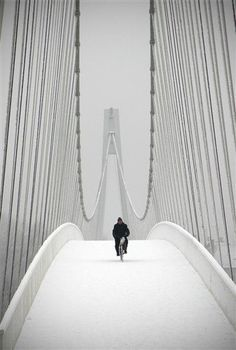 Cycling on Bridge, Snowfall, Winter in Montreal, Capital of canada