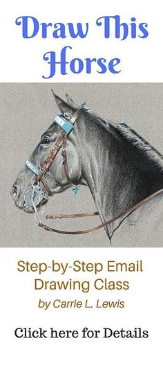 Email Drawing Classes Tennessee Walking Horse