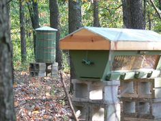 Alternative Beekeeping, Top Bar Hives, Sustainable Beekeeping | Steller Apiaries